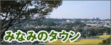 みなみのタウン